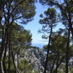vedere de pe Mont Faron