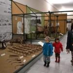 Din nou muzeu in Budapesta